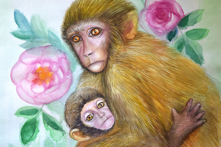 Mother-monkey-baby-and-roses-3