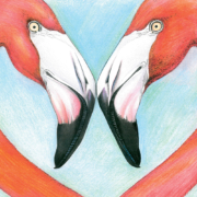 a-pair-of-pink-flamingos-2