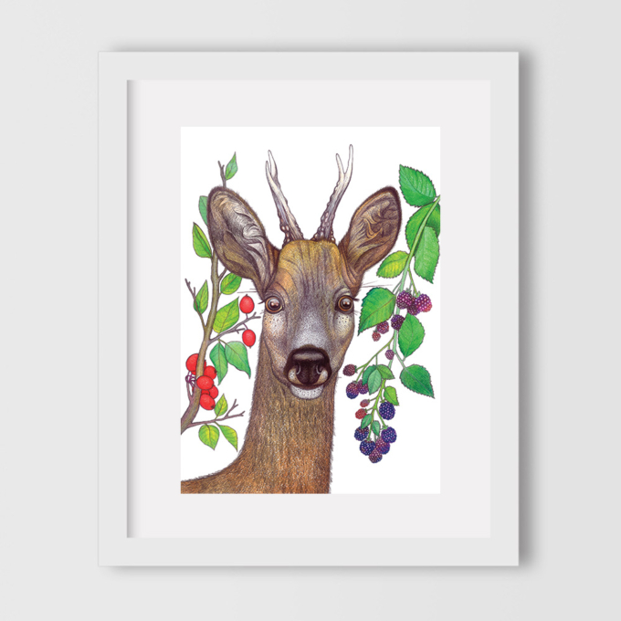 deer-and-berries-1