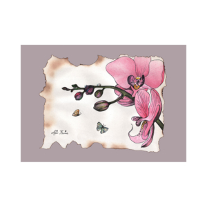 Pink-orchid-with-two-butterflies-2