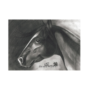 The-Horse-2