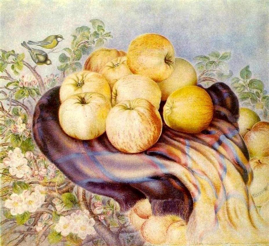 9 apples