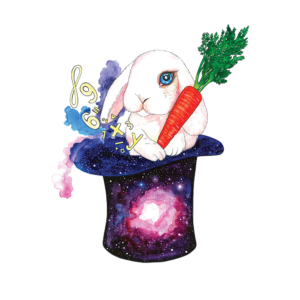 Top-hat-with-rabbit-2