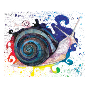 About-the-Snail,-the-Universe-and-Everything-2
