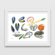 Mussels,-Oysters,-Pearl,-Rosemary,-Scallops-1