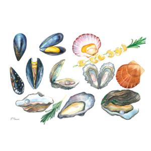 Mussels,-Oysters,-Pearl,-Rosemary,-Scallops-2