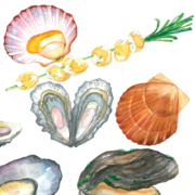 Mussels,-Oysters,-Pearl,-Rosemary,-Scallops-4