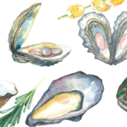 Mussels,-Oysters,-Pearl,-Rosemary,-Scallops-6