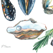 Mussels,-Oysters,-Pearl,-Rosemary,-Scallops-7
