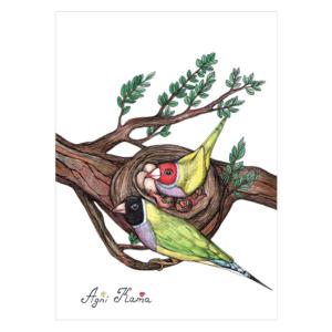 Cute-birds-#3-2