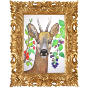 Deer-and-berries-9