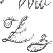 hand-drawn-calligraphy-alphabet-9