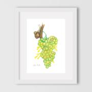 The-magic-of-grape-flavor-1