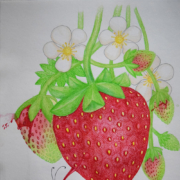 The-magic-of-strawberry-flavor-2